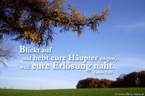 Blickt auf und hebt eure Häupter empor, weil eure Erlösung naht. Lukas 21,28 - Bildquelle: pixelio.de