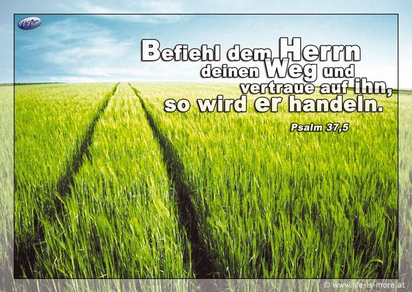 Befiehl dem Herrn deinen Weg und vertraue auf ihn, so wird er handeln. Psalm 37,5 - Bildquelle: pixelio.de