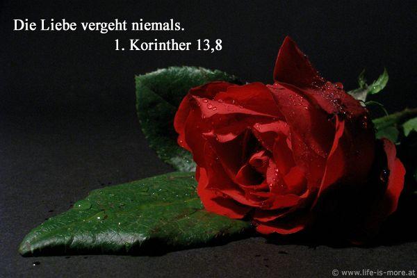 Die Liebe vergeht niemals 1.Korinther 13,8 - Bildquelle: pixelio.de