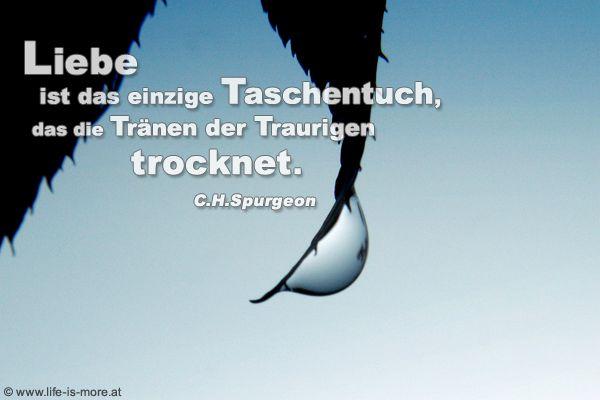 Liebe ist das einzige Taschentuch, das die Tränen der Traurigen trocknet. Charles Haddon Spurgeon - Bildquelle: pixelio.de