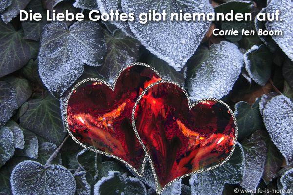 Die Liebe Gottes gibt niemanden auf. Corrie ten Boom - Bildquelle: pixelio.de