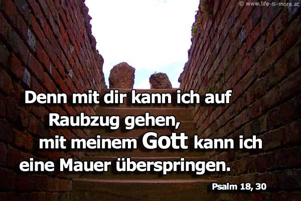 Denn mit dir kann ich auf Raubzug gehen, mit meinem Gott kann ich eine Mauer überspringen. Psalm 18,30 - Bildquelle: pixelio.de
